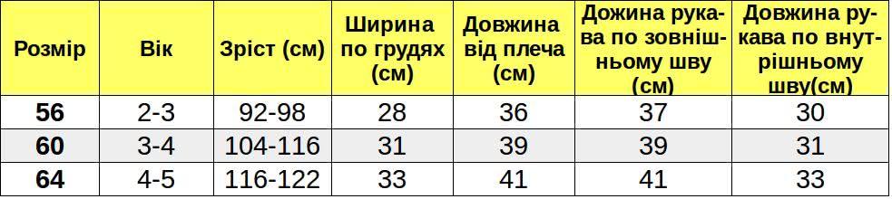 Таблиця розмірів_Д010021 width=