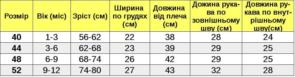 Таблиця розмірів_Я010005 width=